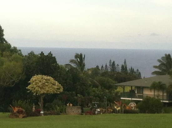 Maui Ocean Breezes: View from our patio