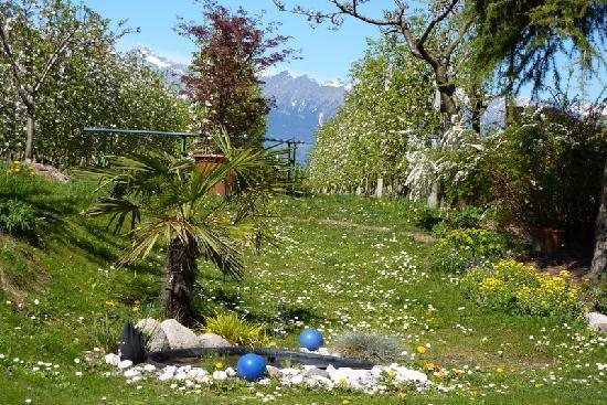 Garni Rebhof : Garten