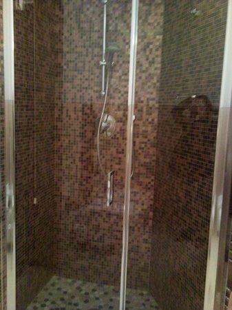 Bologna Hotel Pisa : doccia mosaico