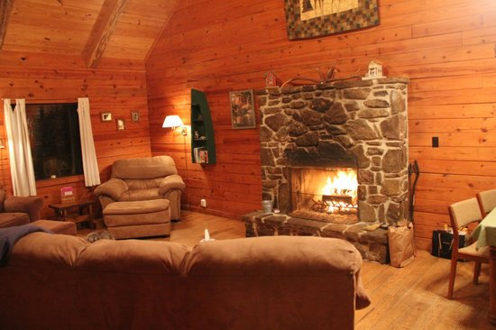 Ozark Mountain Cabins : Living area and fireplace