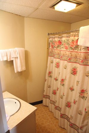 Northwood Motel : Bathroom