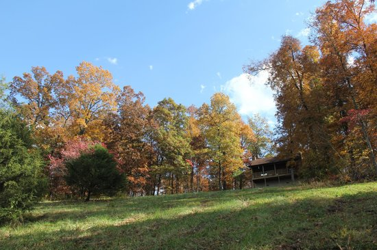 Ozark Mountain Cabins: view of cabin looking up the hill