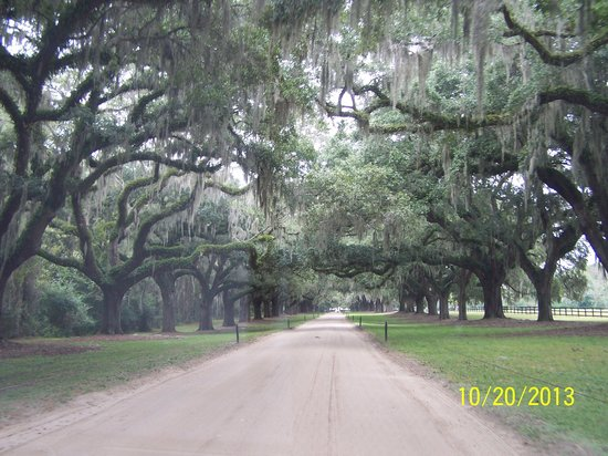 Boone Hall Plantation: A Great Southern Entrance to the Plantation