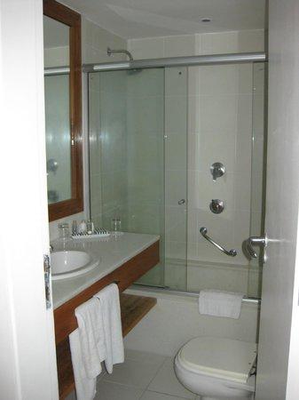 Porto Bay Rio Internacional Hotel : bagno