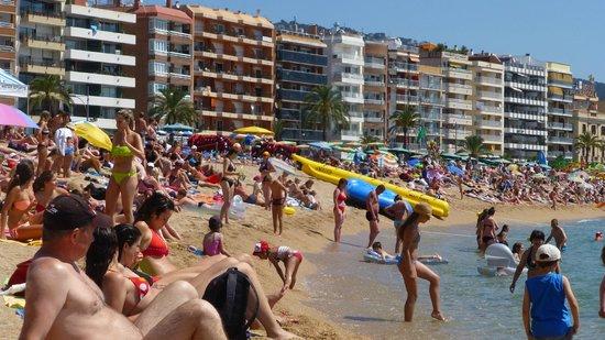 Xaine Park Hotel: городской пляж