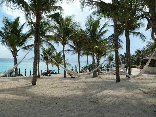 Isla Mujeres Palace: Garrafon Park