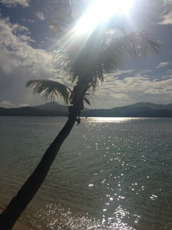 Nanuya Island Resort: View from the beach