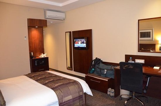 City Lodge Hotel OR Tambo Airport : View of room