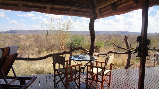 Madikwe Safari Lodge: Our personal deck with plunge pool