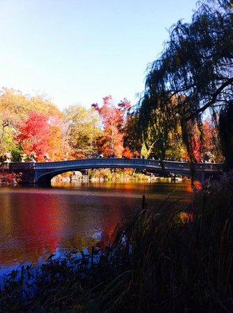 Howard Johnson Manhattan Soho: Bow Bridge Central Park