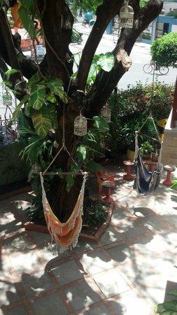 Vitoria Praia Hotel: Redes a disposição dos hóspedes