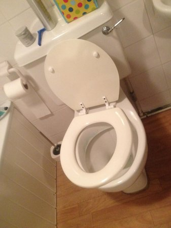 Kings Lodge Hotel: Broken toilet seat and handle