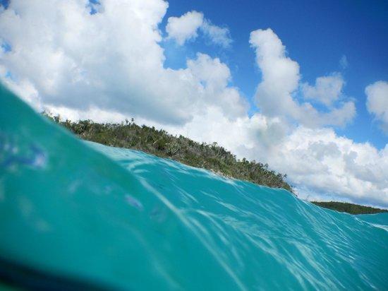 Shannas Cove Resort: Underwater camera