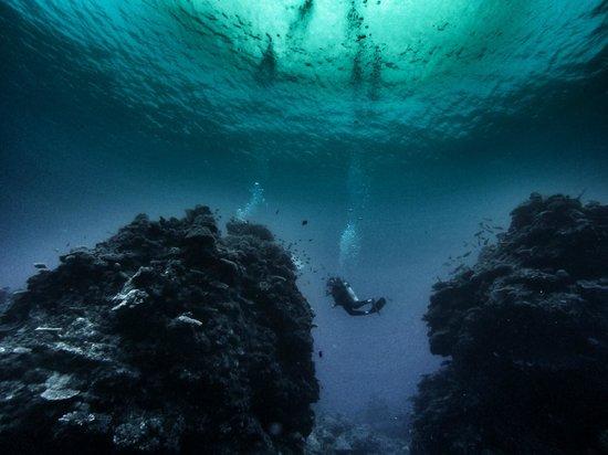 Nautilus Scuba : Twin Bommies