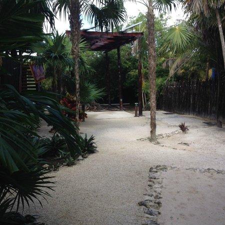 Las Palmas Maya : Paradise