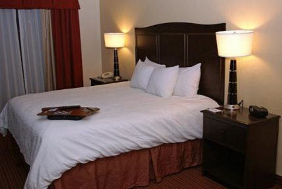 Hampton Inn Champaign/Urbana: King Size Bed
