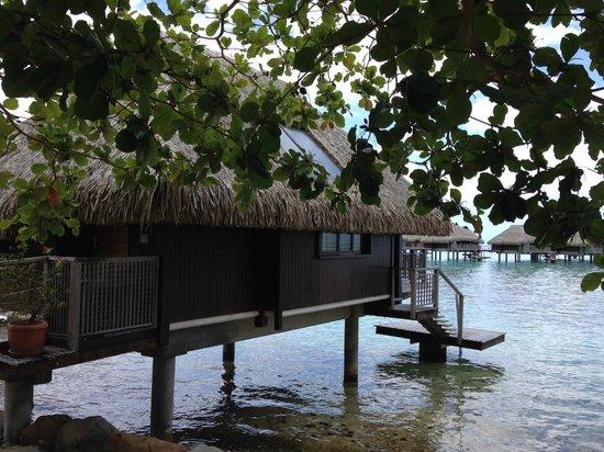Hilton Moorea Lagoon Resort & Spa: Beach Bungalow #54