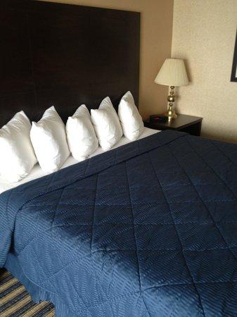 Comfort Inn: Bed