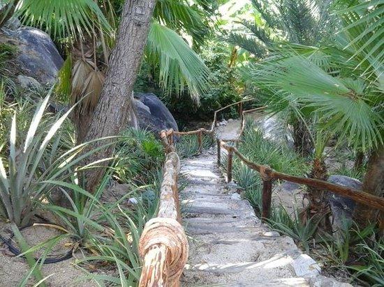Las Brisas Huatulco: Trail