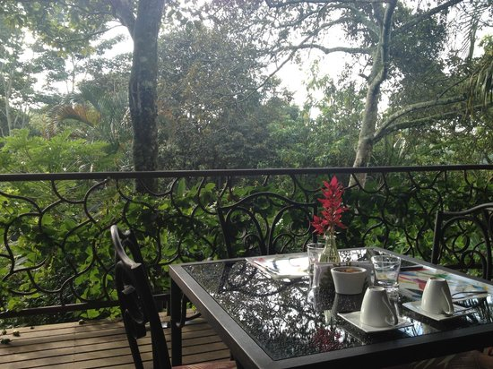 Tacacori EcoLodge: view from breakfast area
