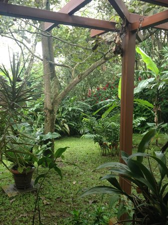 Tacacori EcoLodge: view from the Casita's patio