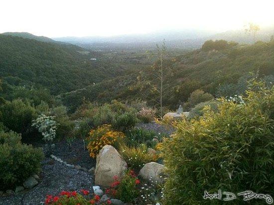 The Oaks at Ojai: Hiking