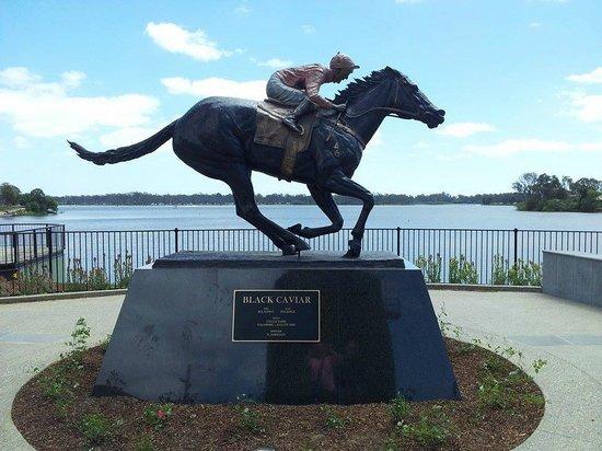 Black Caviar Statue