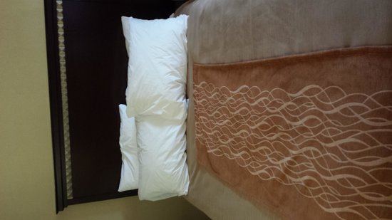 Comfort Inn Clearfield : Bed