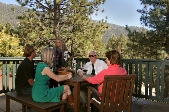 The Grand Idyllwild Lodge : Mountain view from the roof deck!