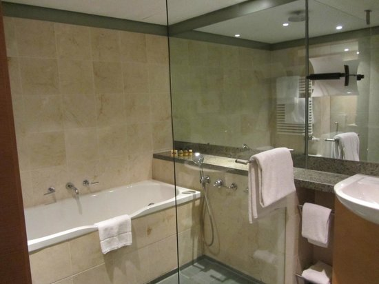 Hyatt Regency Mainz: Tub and Walk in Shower