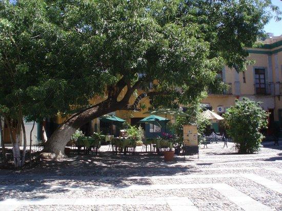 Cafe Bossa Nova: las mejores crepas de guanajuato