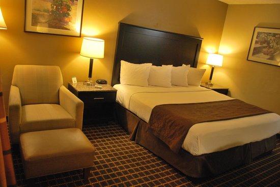 South Bay Inn: A single King bed