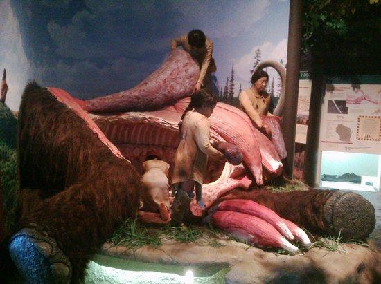 Kenosha Public Museum: The Museum even have lifesize mammoth hunts!