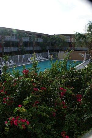 Red Carpet Inn: Pool area