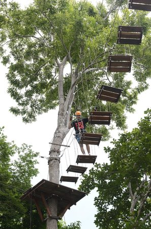Tarzan Adventure Phuket: wood bridges