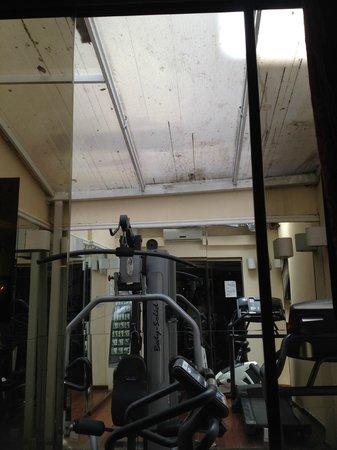 Hotel Cristal Palace: Área da academia