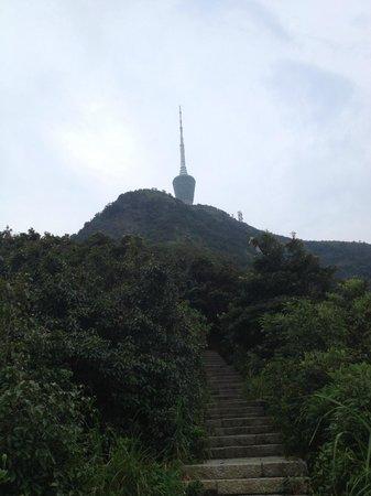 Wutong Mountain: Телебашня на вершине