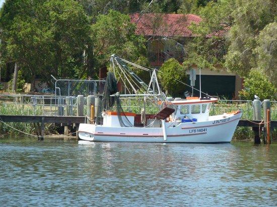 Nova Cruises : Prawn trawlers