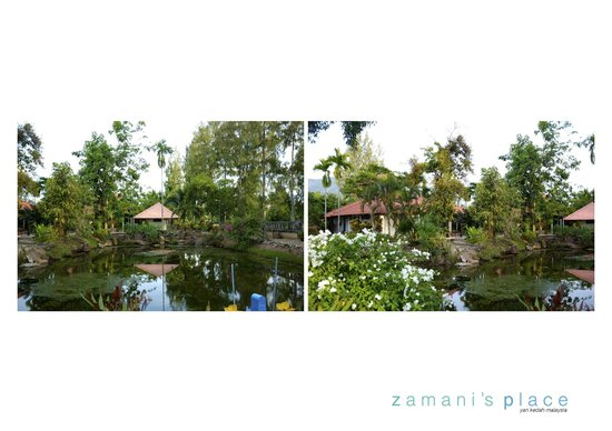 Zamani's Place: Our private garden with a fish pond suitable for evening fishing activities