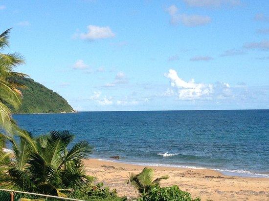 Parador MaunaCaribe: Ocean view