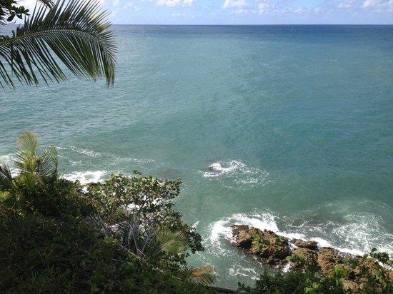 Tuna Point Lighthouse: Ocean view