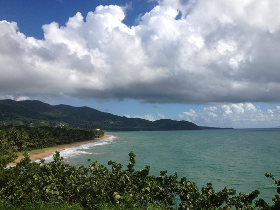 Tuna Point Lighthouse: Beach view