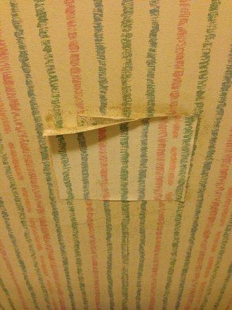 Good Nite Inn Buena Park: wallpaper fail