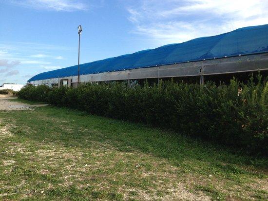 Gli Aromi Sicily: L'azienda