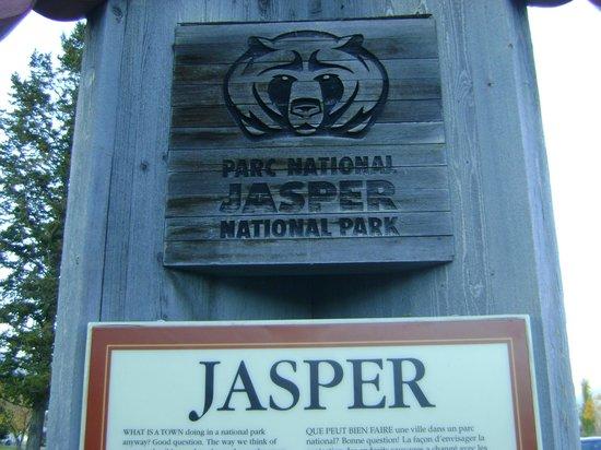 Jasper Discovery Trail: L'emblème de l'ours à suivre tout le long du sentier