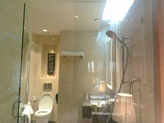 Holiday Inn New Delhi Mayur Vihar Noida: Showering stall and lav