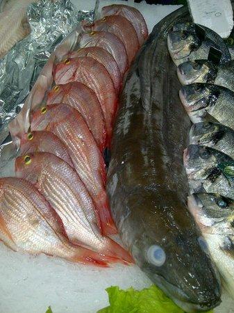 O Pescador Benagil: Frischer Atlantikfisch