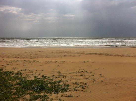 Paradise Road The Villa Bentota: Yet more beach.