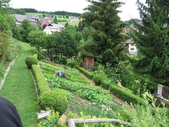 Eder Wohlfühl Hotel: eigenerKräutergarten