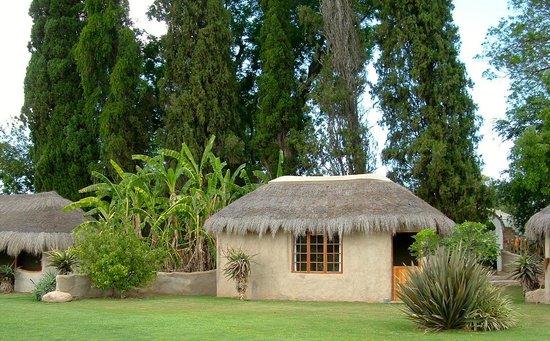 garden hut. Chrislin African Lodge: Garden Hut